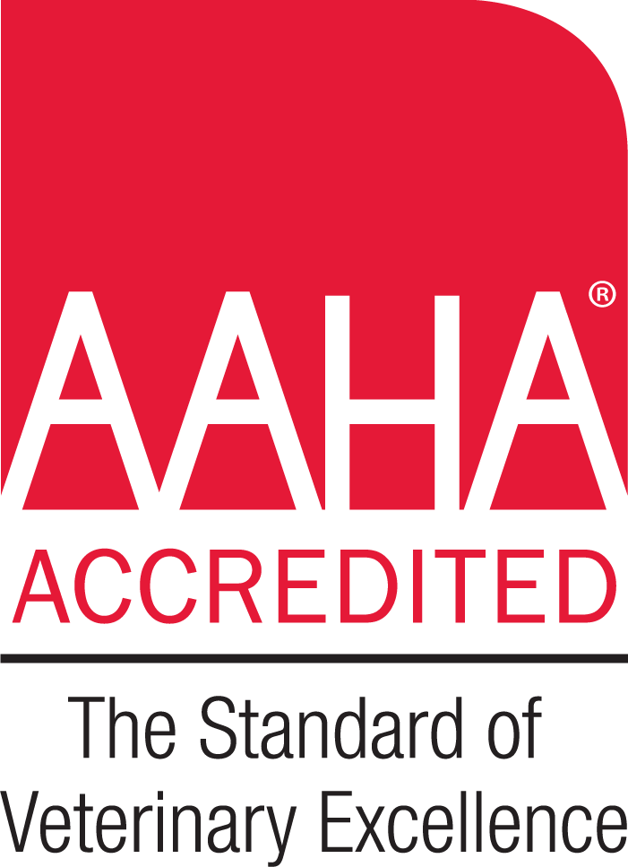 AAHA Accredited: The standard of veterinary excellence